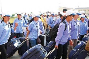 Chính sách miễn giảm cho lao động cư trú bất hợp pháp tại Đài Loan tự nguyện về nước