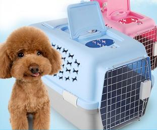 Đơn hàng sản xuất, vận chuyển, đóng gói đồ dùng thú cưng tại KỲ TÍN - Thành phố Cơ Long.