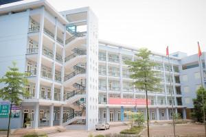 Giới thiệu về trung tâm đào tạo tiếng Nhật của công ty Hoàng Việt